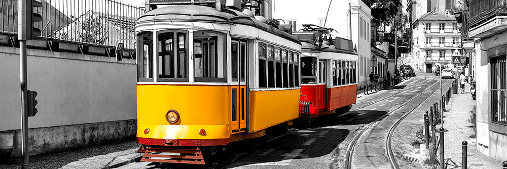 Photo wallpaper with trams