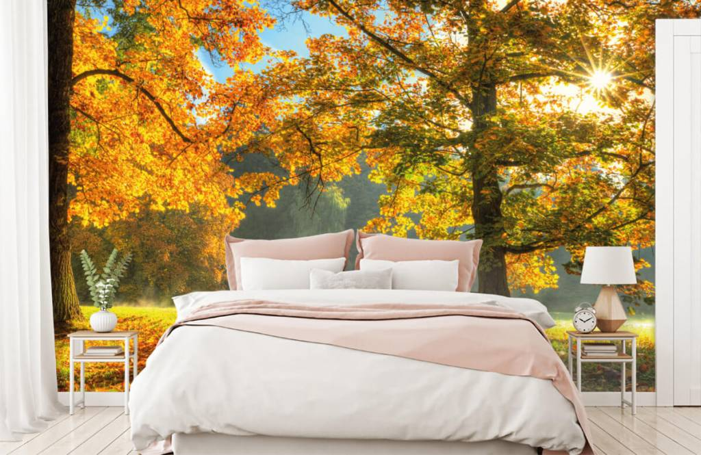 Forest wallpaper - Tree in autumn colors - Bedroom 4