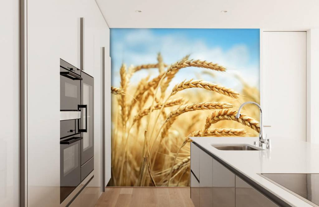 Other - Cereal - Kitchen 1
