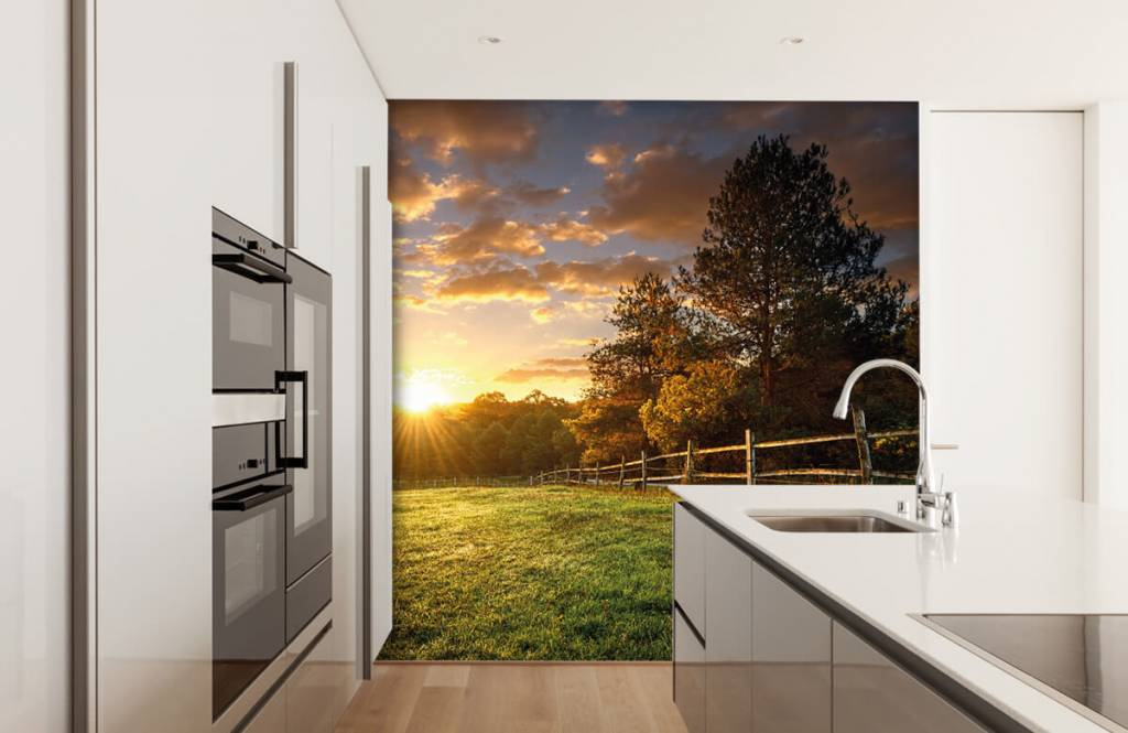 Landscape wallpaper - Pasture at sunset - Bedroom 3