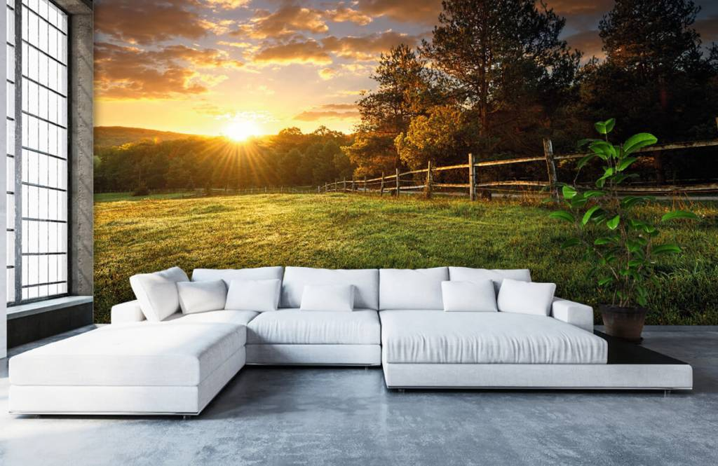 Landscape wallpaper - Pasture at sunset - Bedroom 5