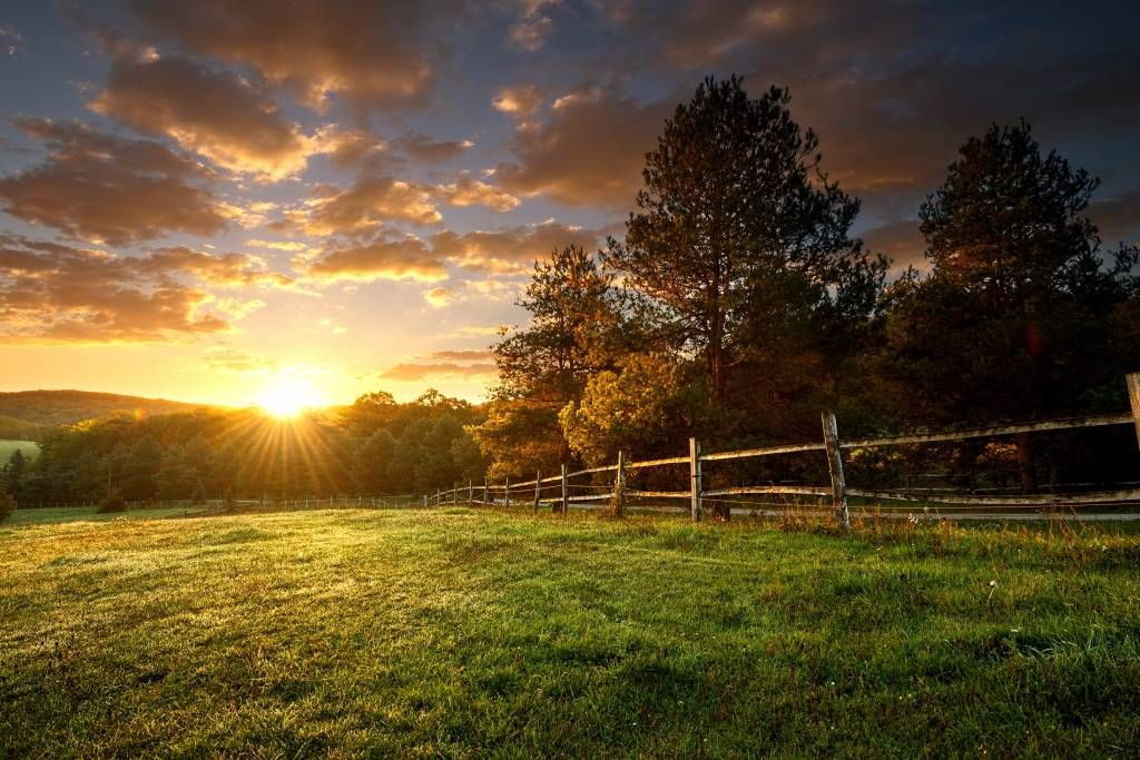 Landscape wallpaper - Pasture at sunset - Bedroom