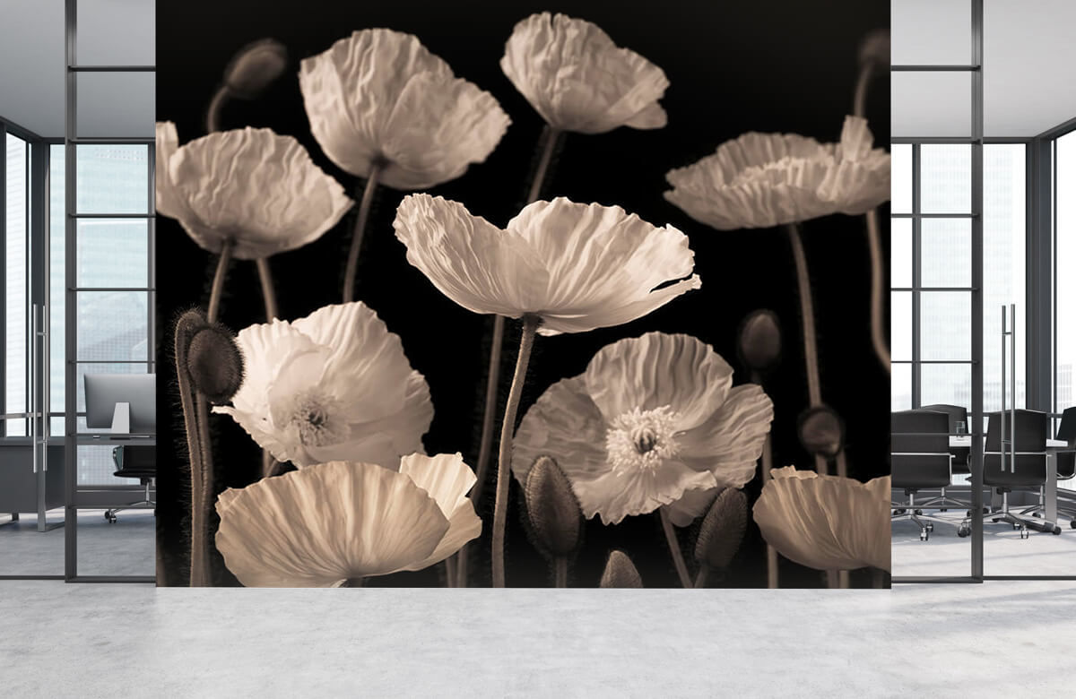 Poppies and buds 7